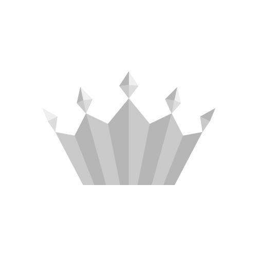 シルバーの王冠イラスト